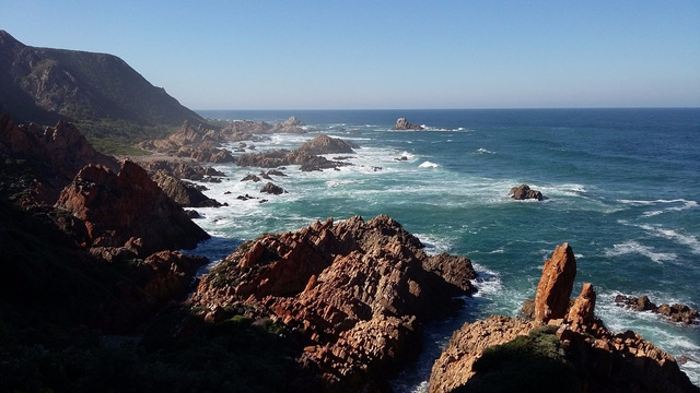 View along the coast during the Kranshoek Coastal Walk