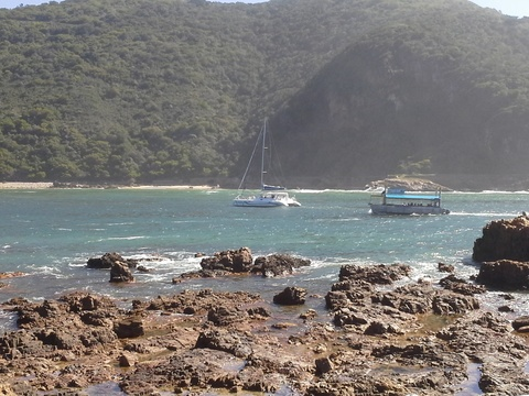 Take a cruise on the Knysna lagoon!
