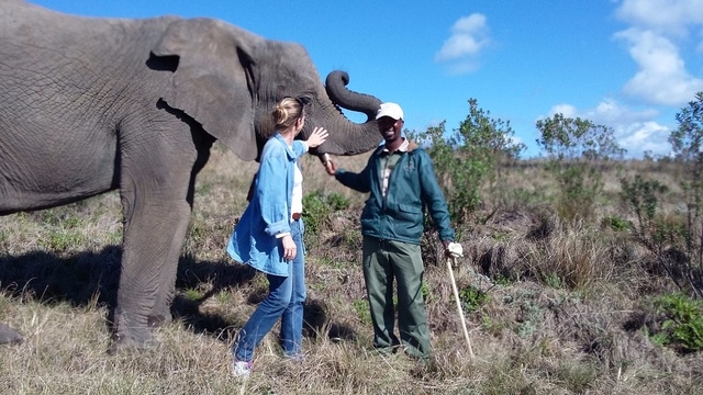 A visit to Knysna Elephant Park is a must!